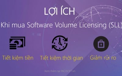 Lợi ích của việc cấp phép số lượng lớn khi mua phần mềm