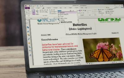 Cần làm gì để đảm bảo một tài liệu PDF để được xuất bản